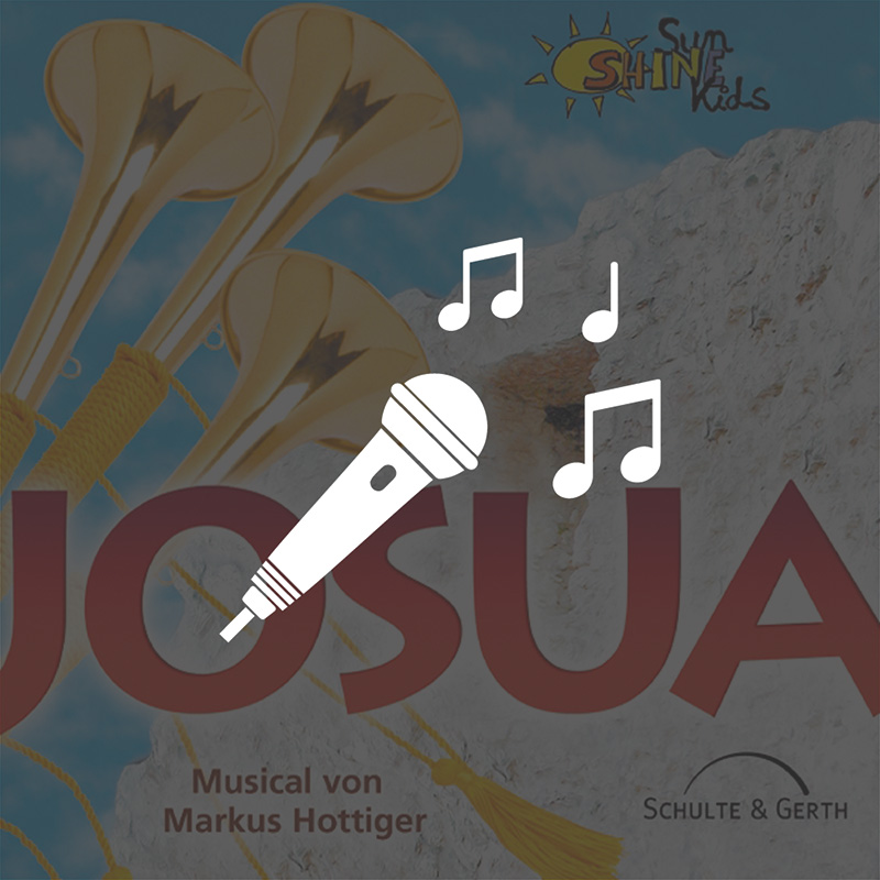 Playback-CD - Josua