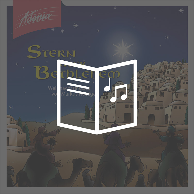 Lieder- und Textheft - Stern über Bethlehem