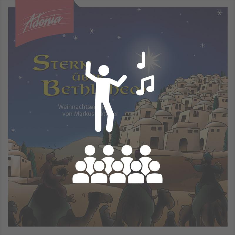 Aufführungsrecht - Stern über Bethlehem